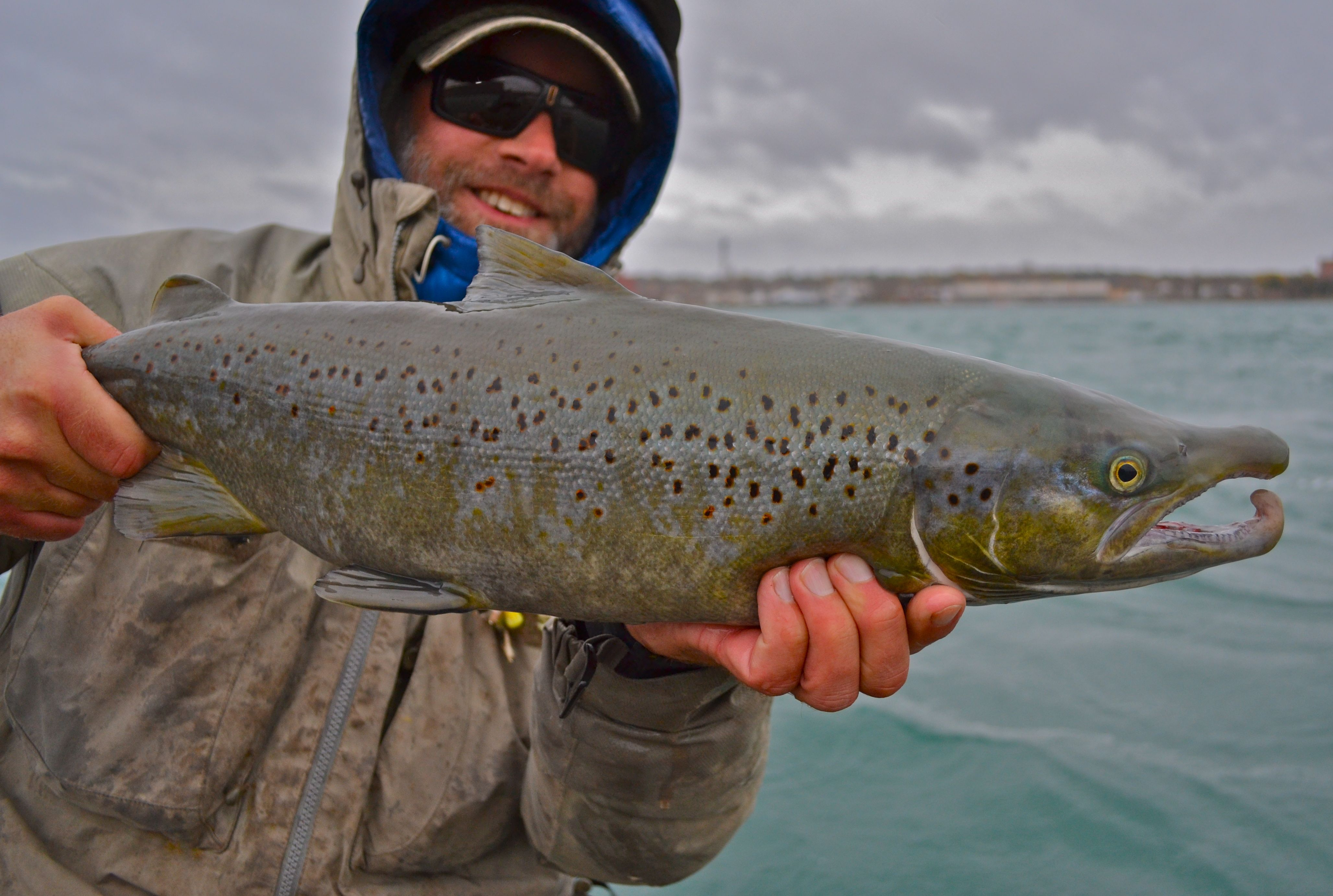 Petzke brad midwest fly fishing expo 2015 for Fly fishing shows